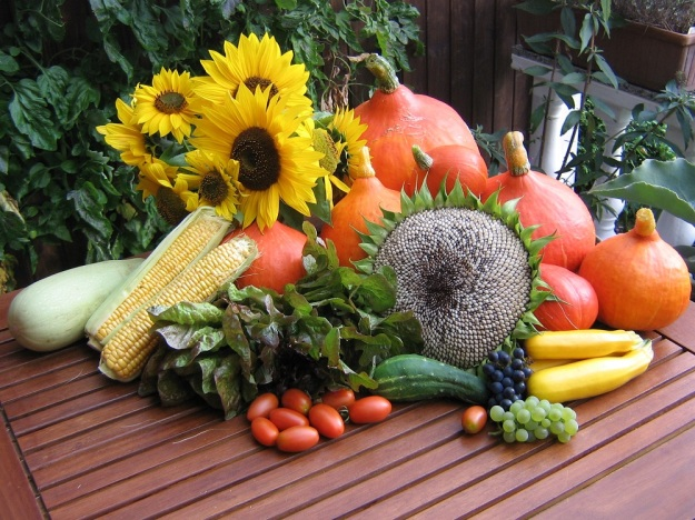This year's harvest from the author's garden in Germany.