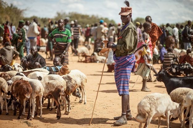 1280px-Karamojong_Shepherd in north-east Uganda