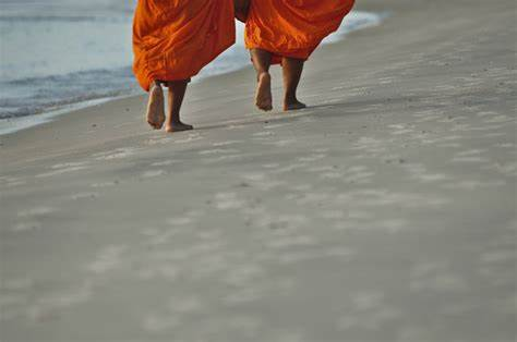 two monk walking on beach